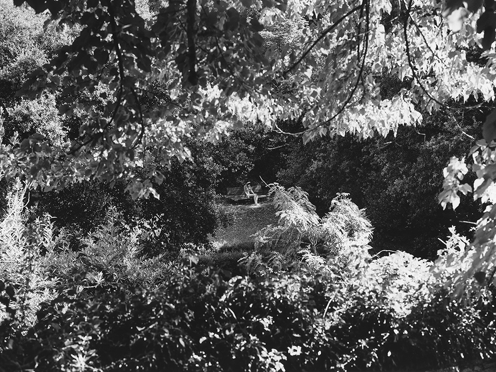 028 Rogier Houwen, Paradijs